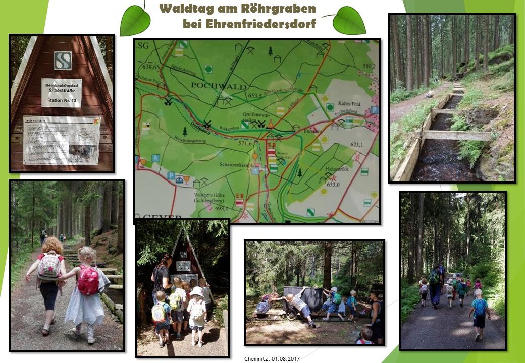 Bild Ausflug Waldtag am Röhrgraben
